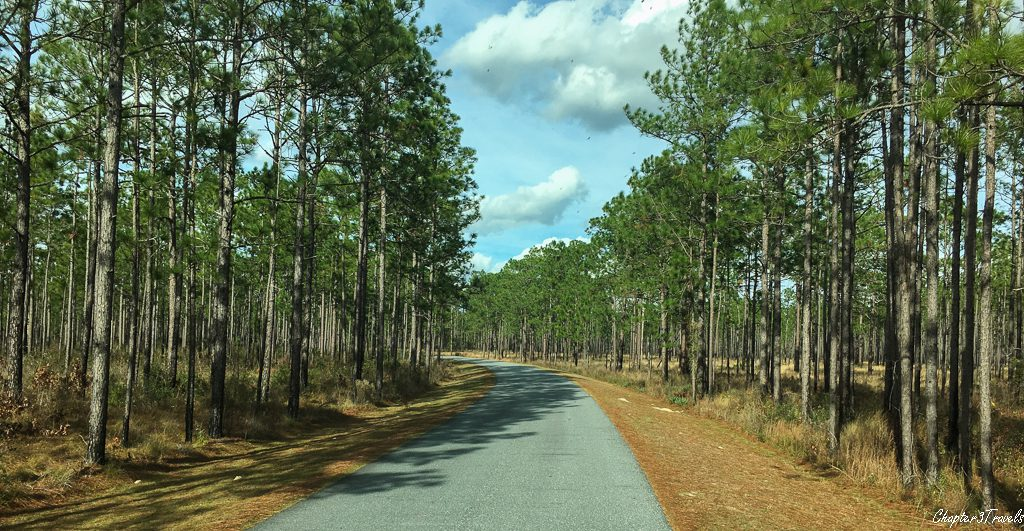 The entrance to Suwannee River State Park in Live Oak, Florida