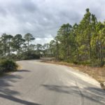 Campground road at Grayton Beach State Park.