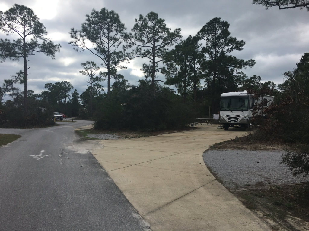 Campsites at Grayton Beach State Park