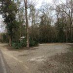 Large, private campsite at Palmetto Island State Park