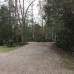 Large private campsite at Palmetto Island State Park