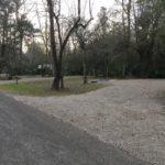Campsite at Palmetto Island State Park