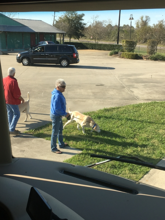 People walking dog on campsite at Gulf Coast RV Resort in Beaumont, Texas