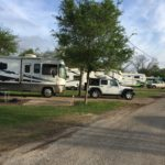 Row of RVs parked at Riverwalk RV Park in San Antonio, Texas