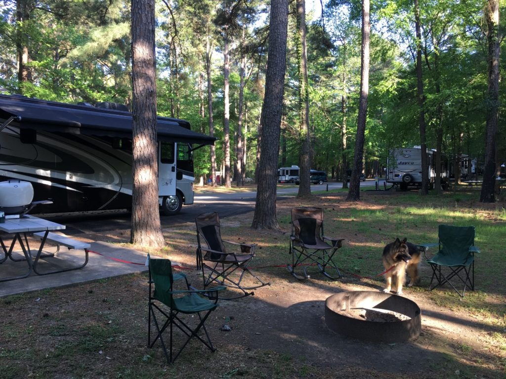 Campsite at Atlanta State Park