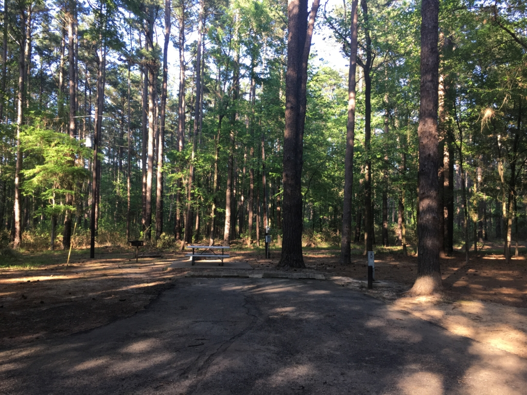 campground review atlanta state park atlanta texas