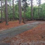 Un-level campsite at Lake Catherine State Park
