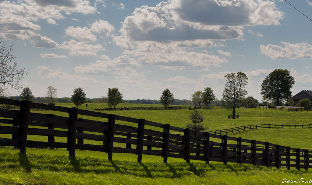 Rolling hills and fences in Lexington, Kentucky