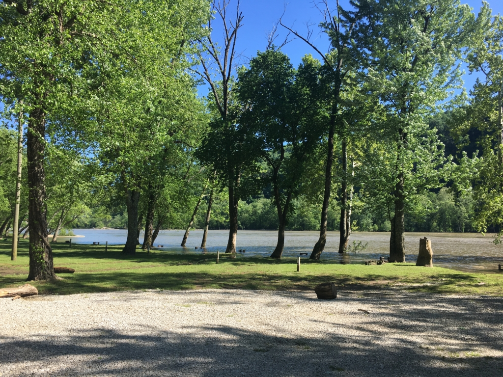 Campsites at New River Campground in Gauley Bridge, West Virginia
