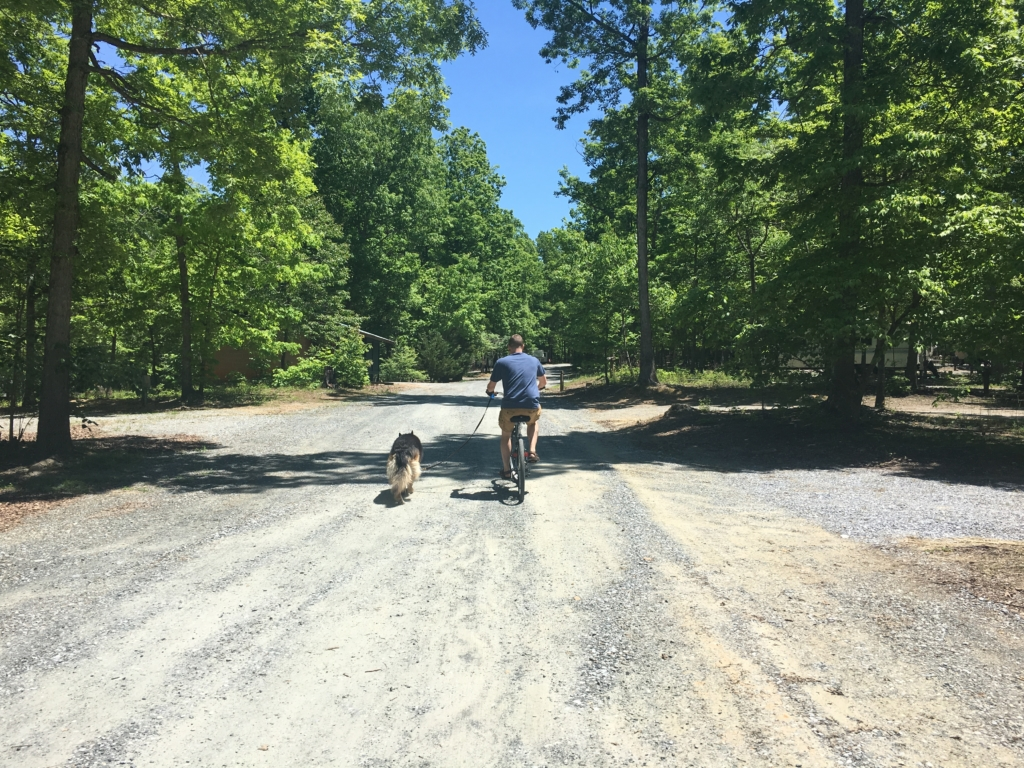 Kevin on a bike with Dixie running next to him