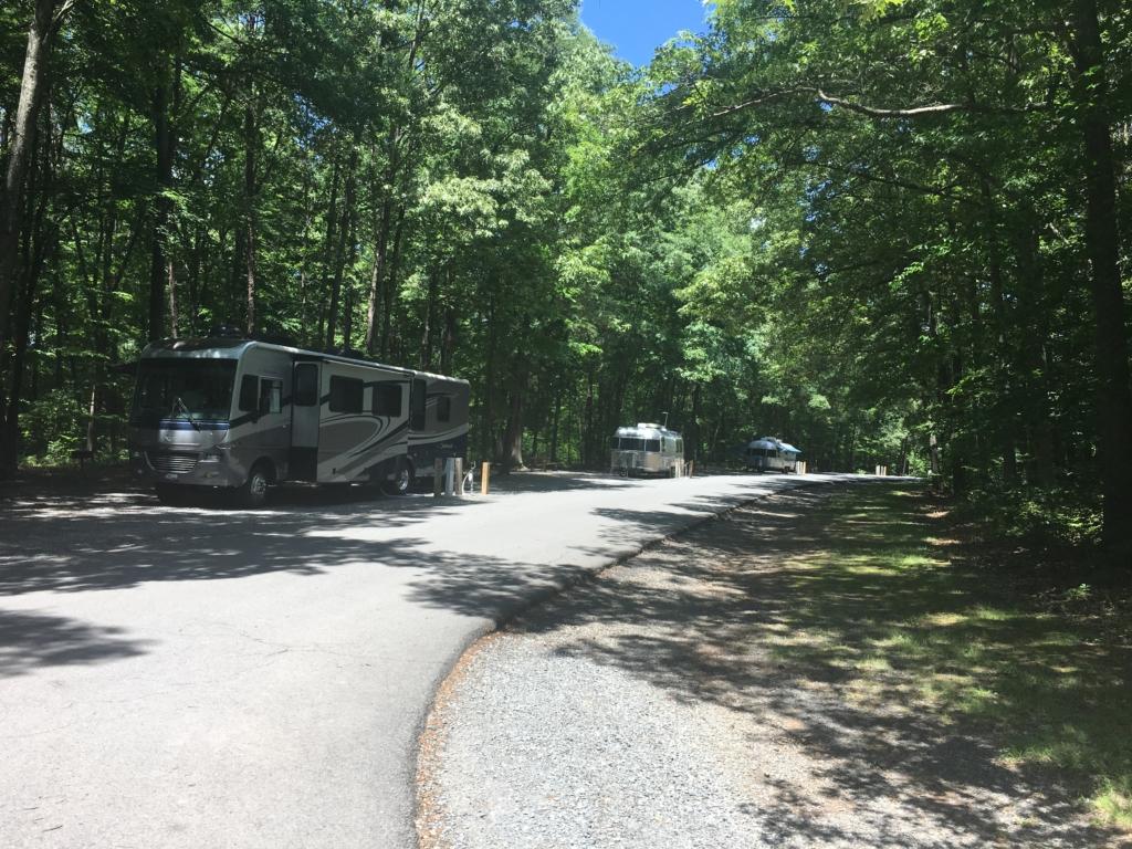 Campsites at Bull Run Regional Park Campground