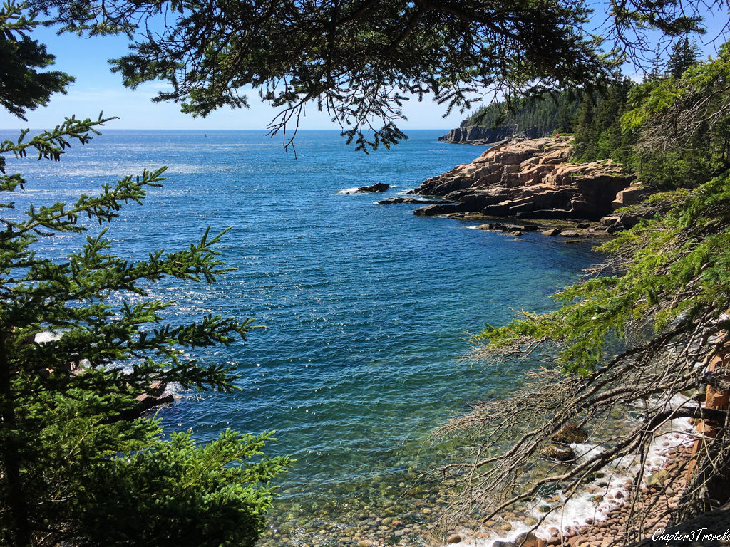 View of the cliffs and ocean from the Ocean Path at Acadia National Park