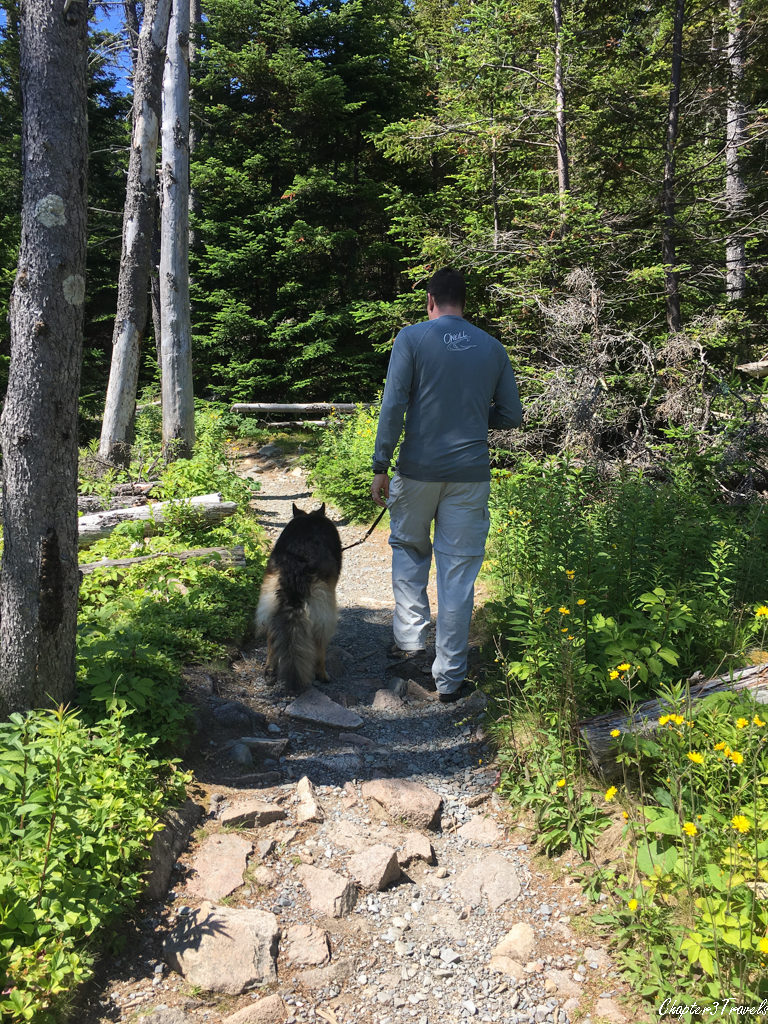 Kevin and Dixie walking on the Ocean Path Trail at Acadia National Park