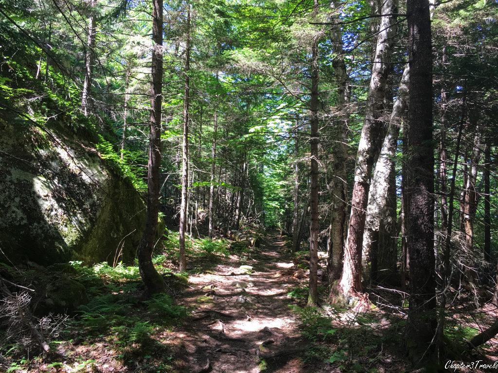 Beech Mountain Trail at Acadia National Park