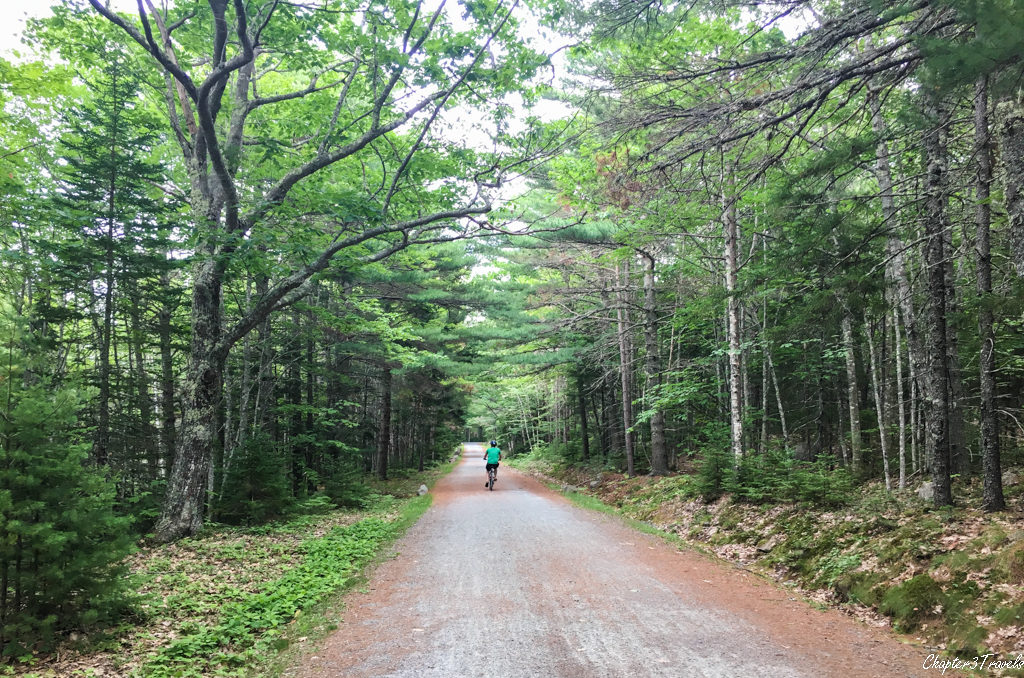 Biking on a Carriage Road in Acadia National Park