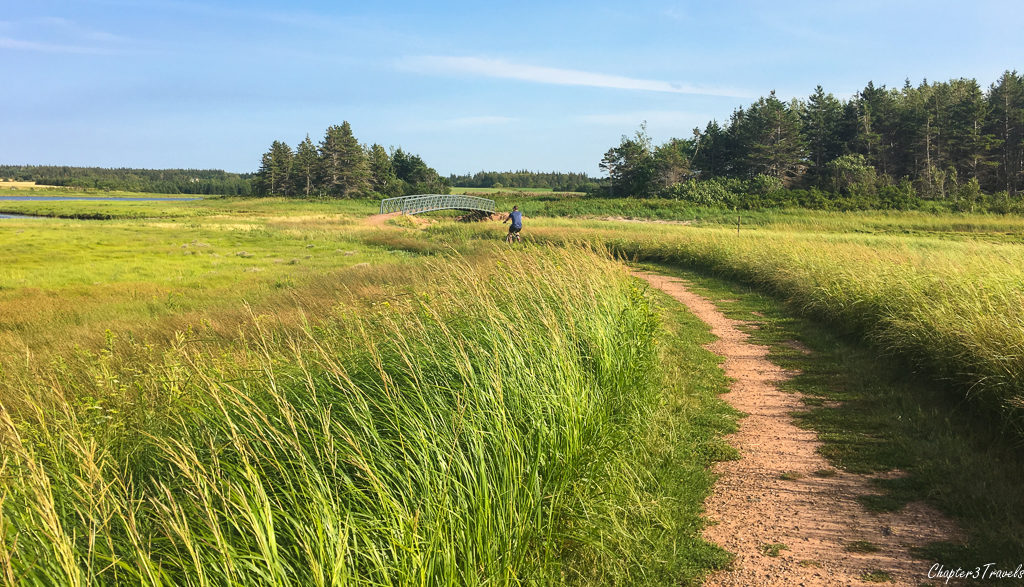 Trail through marshes along the Homestead Trail in Prince Edward Island National Park