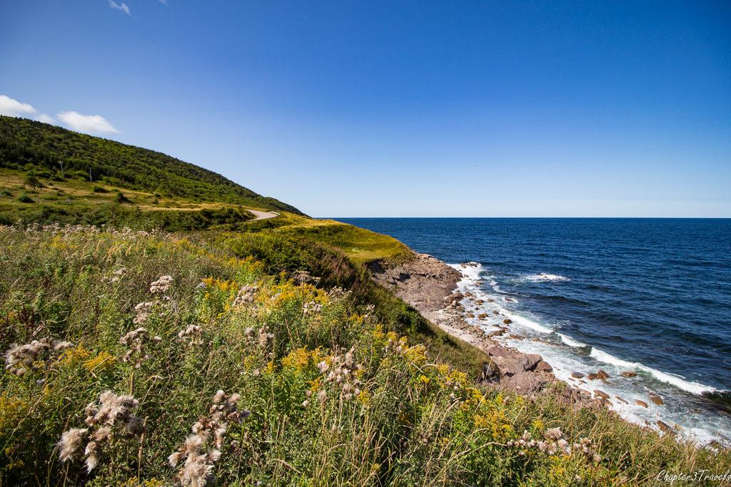 Wildflowers, rocks, and ocean views on Cape Breton Island