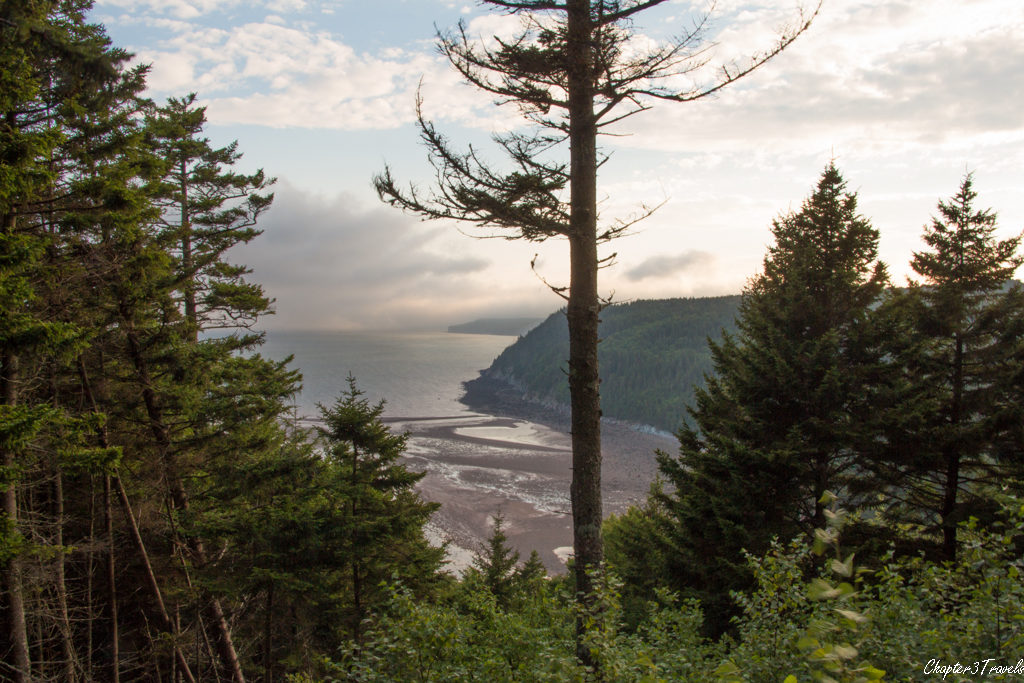 Viewing platform along scenic road in Fundy Trail Park, New Brunswick