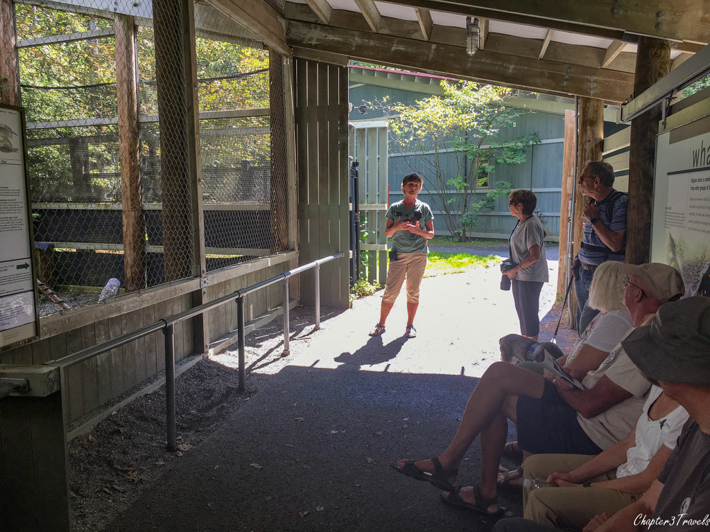 A tour at Vermont Institute of Natural Science