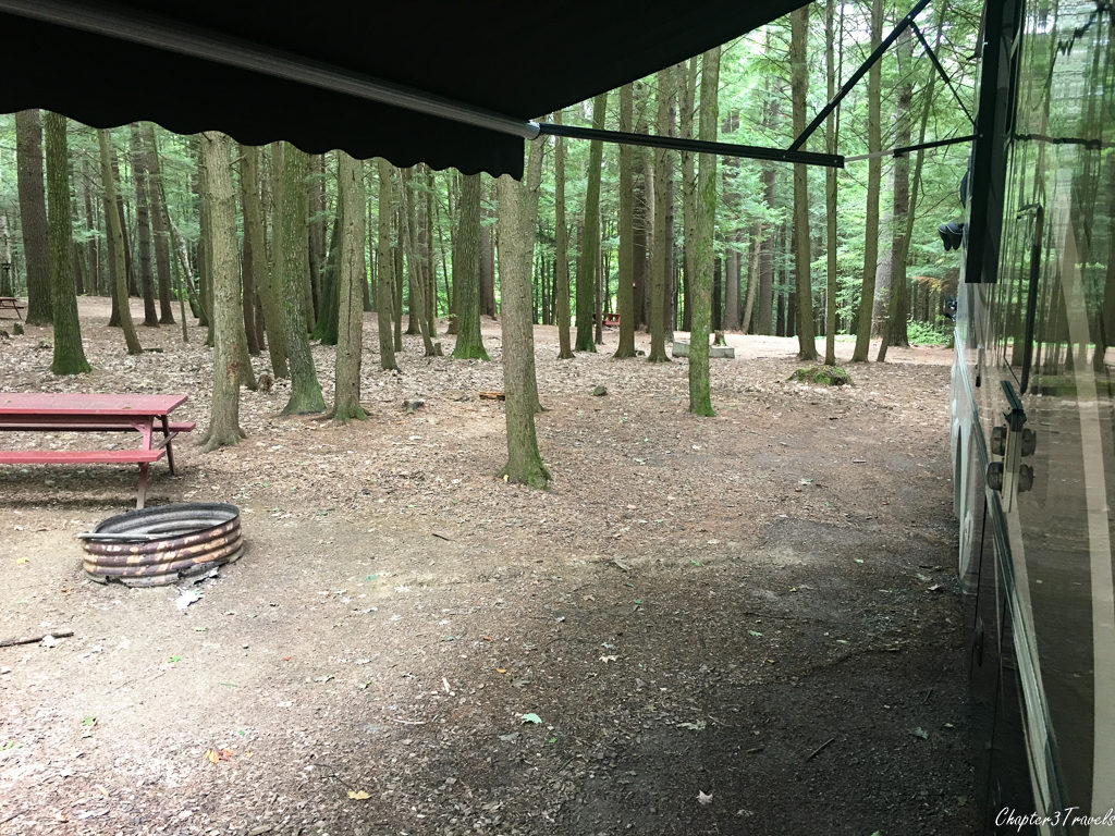 Heavily wooded campsite at Crown Point Camping Area
