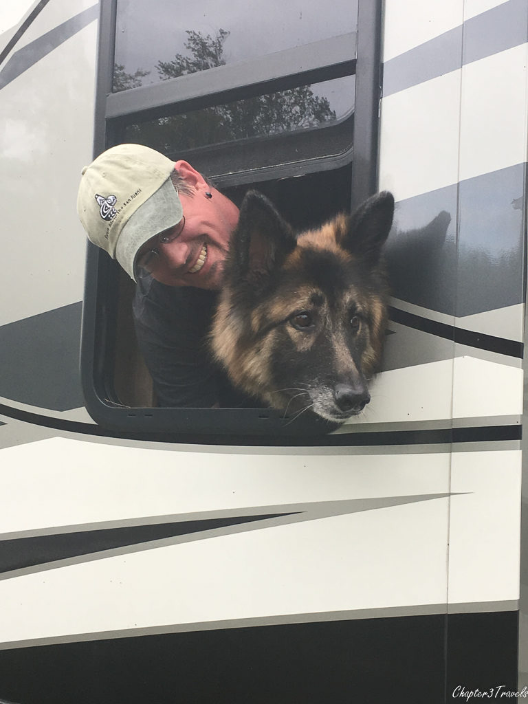 Dixie sticking her head out the side window of the RV