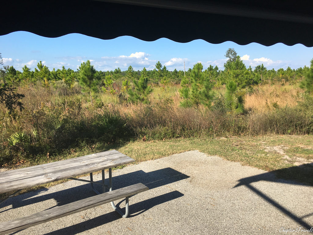 Patio side of Site #467 at Gulf State Park
