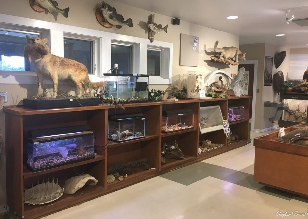 Nature center at Gulf State Park