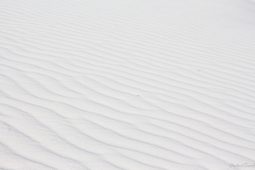 Patterned sands at White Sands National Monument