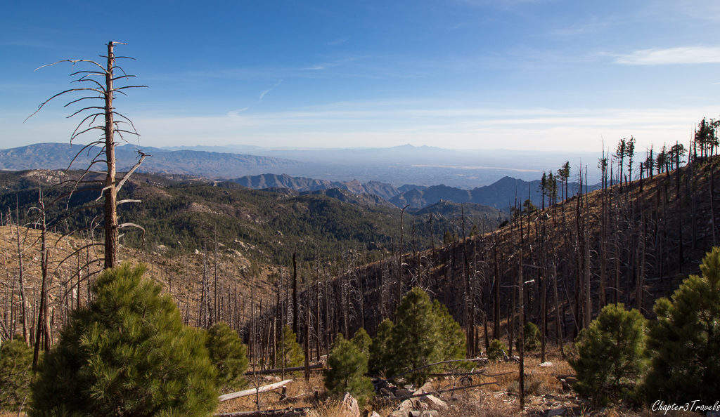View from the top of Mount Lemmon in Tucson
