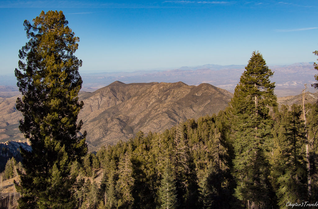 View from top of Mount Lemmon in Tucson, Arizona