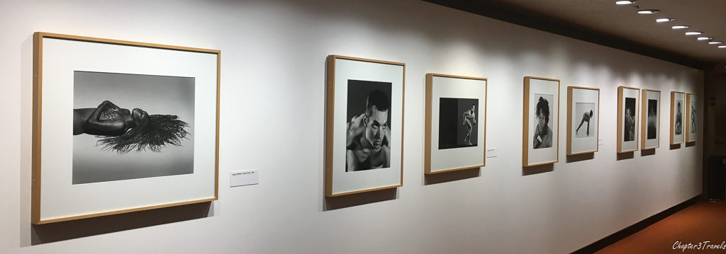Photography exhibit at The Palm Springs Art Museum, Palm Springs, California