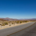Joshua Tree (40 of 81)