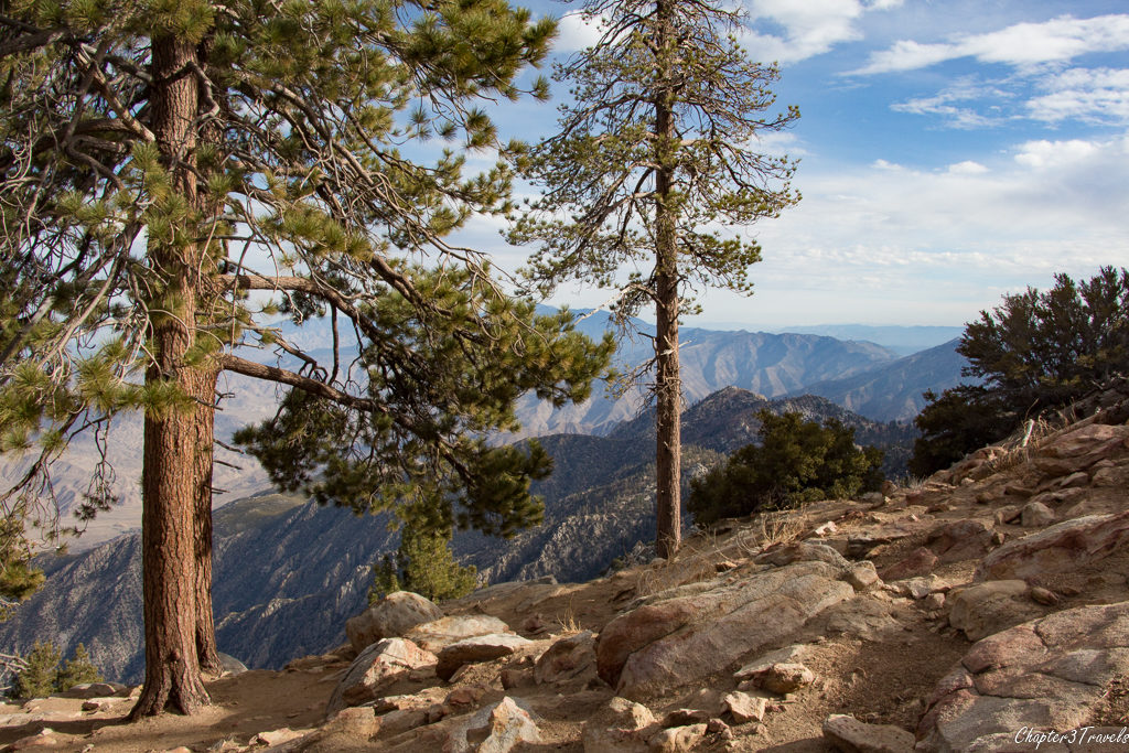 View from the top of Mount San Jacinto in Palm Springs, California