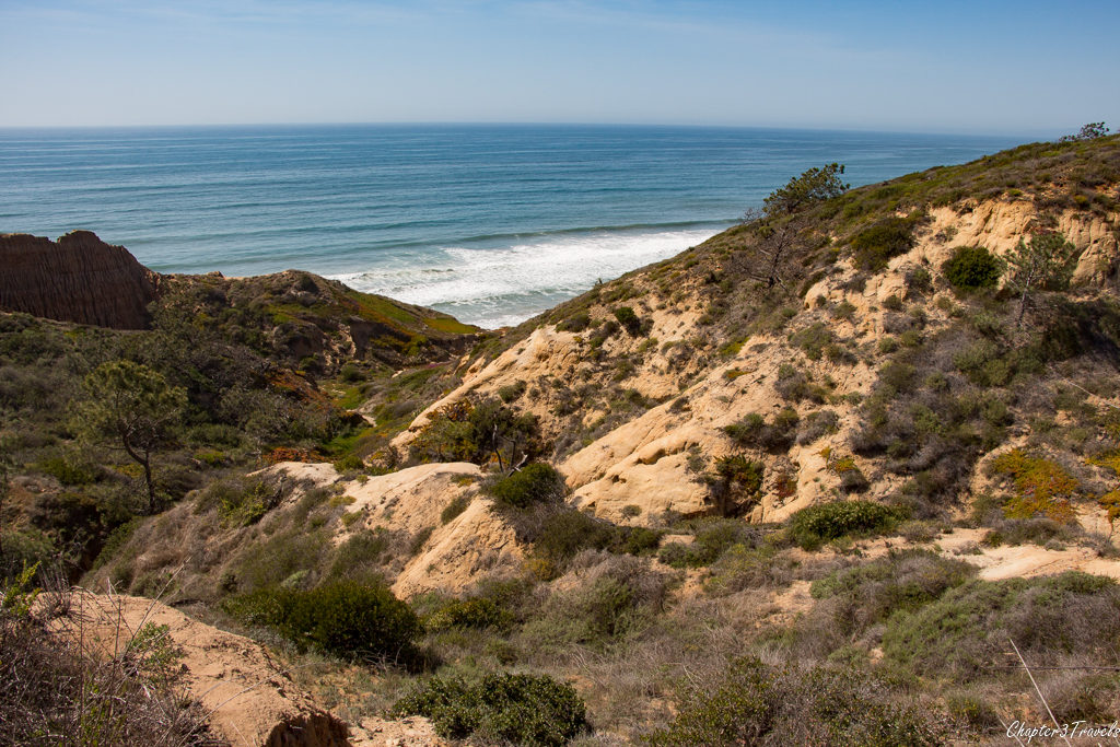 The coast and cliffs at Torrey Pines State Reserve