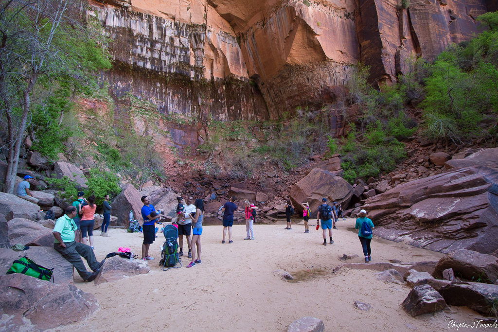 The Upper Pools at Zion National Park