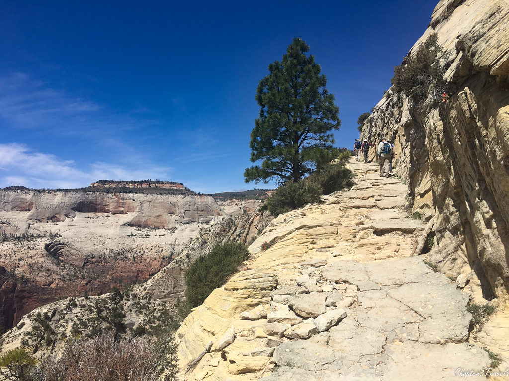 The trail to Observation Point at Zion National Park
