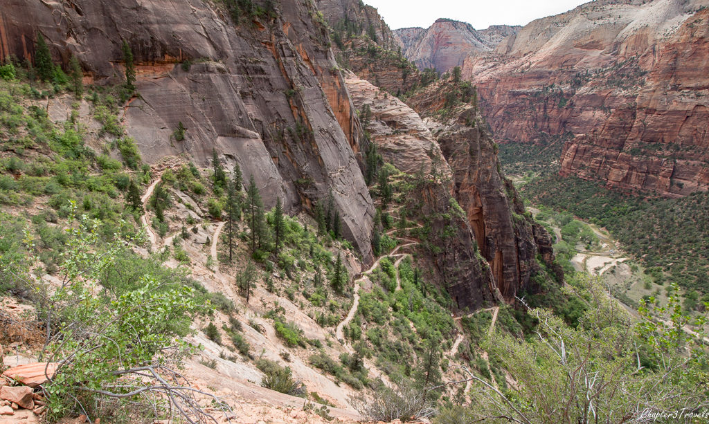 Switchbacks on the hike to Observation Point at Zion National Park