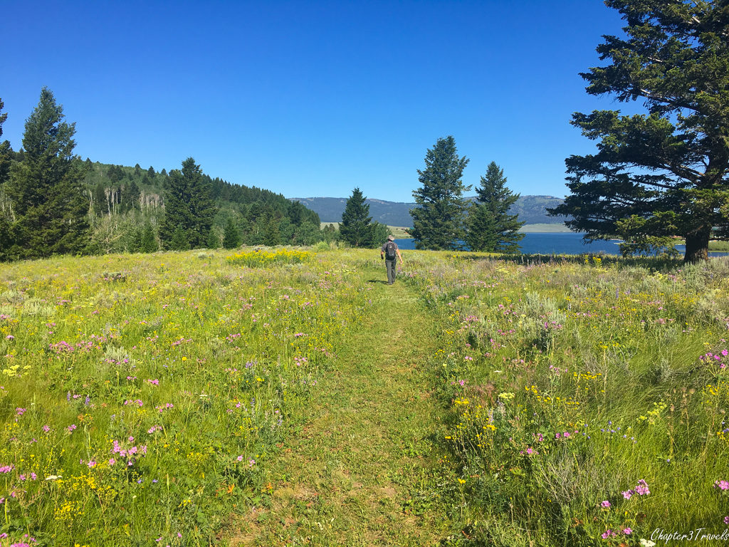 Trail at Henrys Lake State Park in Island Park, Idaho