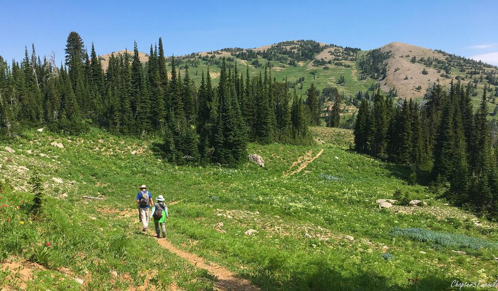 Scenery along the Rock Creek Basin/Sawtelle Trail in Idaho