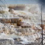 Mammoth Hot Springs (78 of 89)