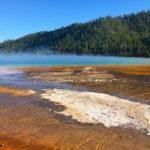 Bacterial mats at Yellowstone National Park