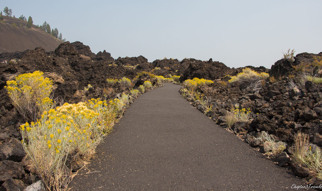 A path leading into the lava fields at Newberry Volcanic National Monument