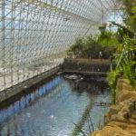 The ocean at Biosphere II