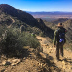 Hiking the Wasson Peak Trail at Saguaro National Park