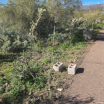 Cider blocks sitting on the ground at Black Canyon Campground in Black Canyon City, Arizona