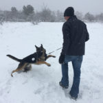 Thor trying to catch a snowball
