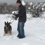 Thor waitinf for Kevin to throw a snowball