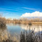 Albuquerque nature preserve