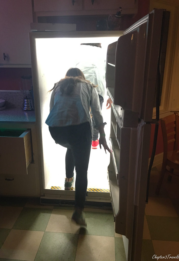 Woman walking into secret passageway through refrigerator