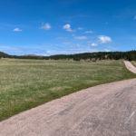Grassy fields in Custer State Park